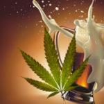 ¿Cómo afecta al cerebro combinar alcohol y marihuana?